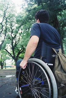 cadeirante passando por caminho arborizado