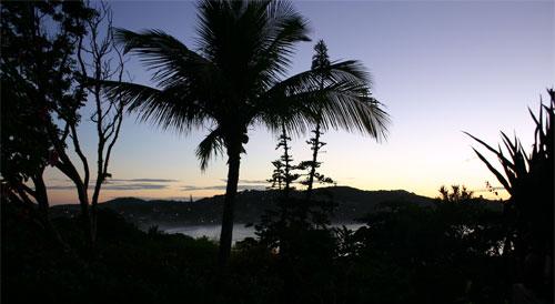 Silhueta de coqueiro e montanhas da praia da Ferradura em Buzios durante pôr do sol