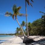 Esse canto da praia me conquistou! É mais deserto e ótimo para relaxar.