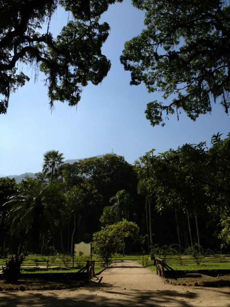 vista do jardim botânico